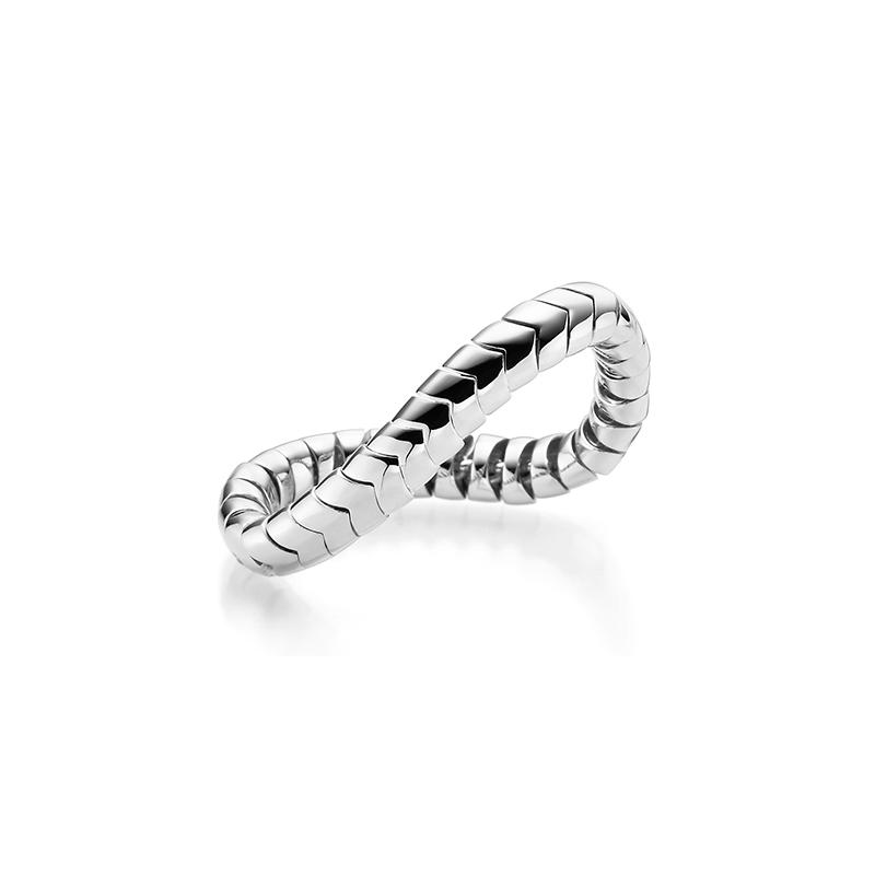 Shannon Ring